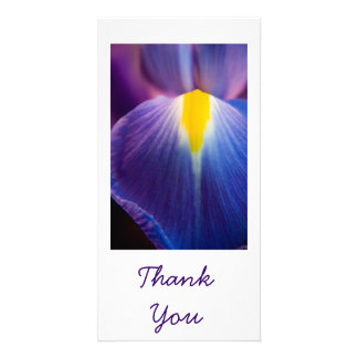 Pretty in Purple Iris Thank You Cards Picture Card