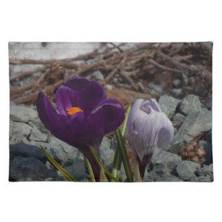Pretty in Purple Placemats