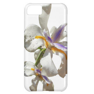 Pretty Iris white and purple Case For iPhone 5C