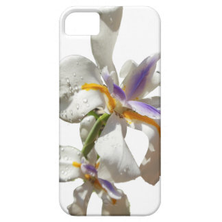 Pretty Iris white and purple iPhone 5 Cover