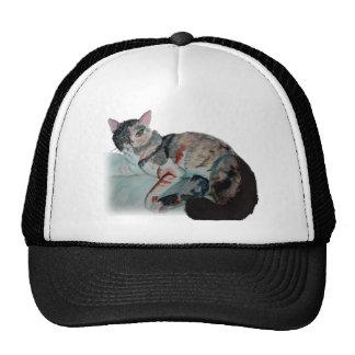 pretty kitty cap