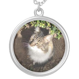 Pretty Kitty necklace