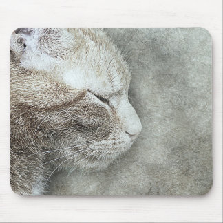 Pretty Kitty Profile | Abstract | Watercolor Mouse Mat