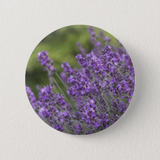 Pretty Lavender Fields Button