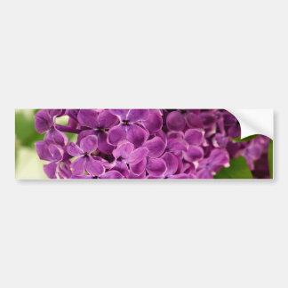Pretty Lilac Bumper Sticker