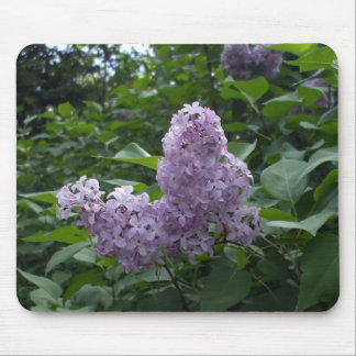Pretty Lilac Flower Mouse Pad