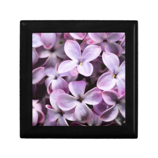 Pretty Lilacs Gift Box