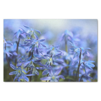 Pretty Little Blue Bells Tissue Paper