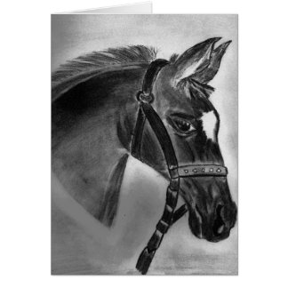 Pretty little foal greeting cards