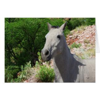 Pretty Little Gray Grey Pony with Big Eyes - Blank Card