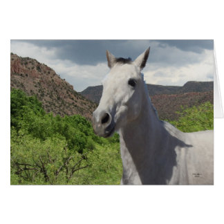 Pretty Little Gray Grey Pony with Big Eyes - Blank Greeting Card