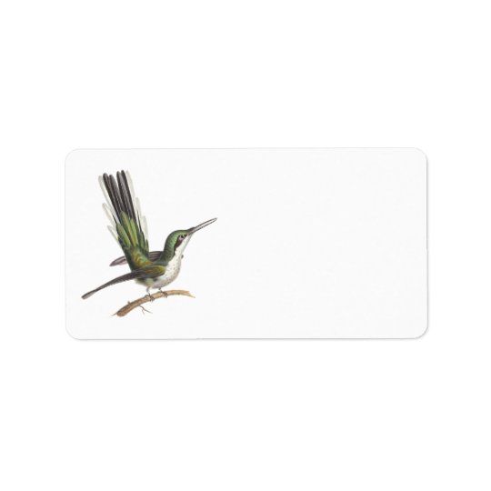 Pretty Little Green Hummingbird by Rene Lesson Label