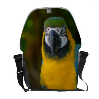 Pretty Macaw Courier Bags