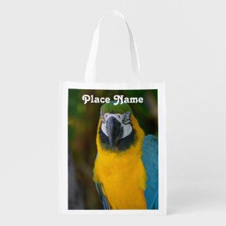 Pretty Macaw