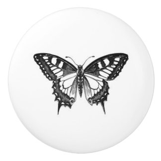 Pretty Monarch Butterfly in black and white Ceramic Knob