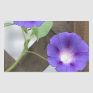 Pretty Morning Glories Rectangular Sticker