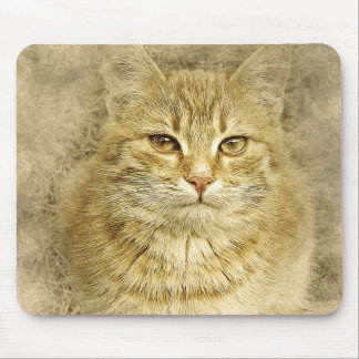 Pretty Orange Kitty | Abstract | Watercolor Mouse Mat