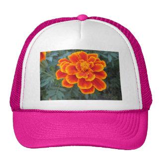 Pretty Orange Marigold Trucker Hats