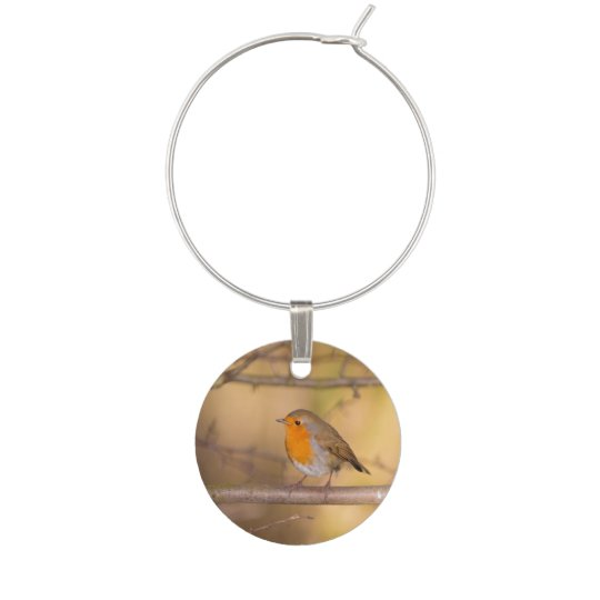 Pretty Orange Robin In The Woods Wine Charm