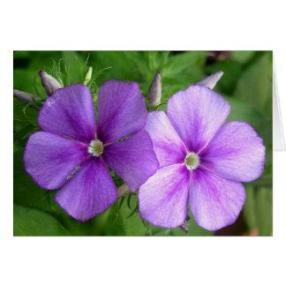 Pretty Pair of Purple Flowers Card