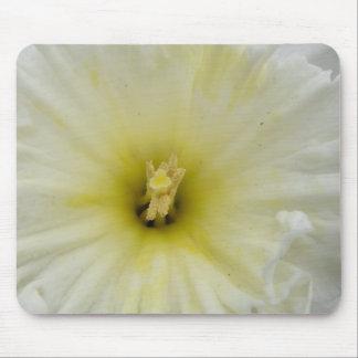 Pretty Pale Daffodil Mousepad