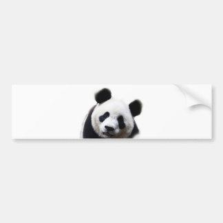 Pretty Panda Artwork Bumper Sticker