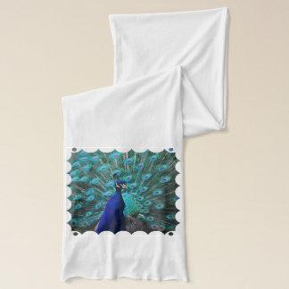 Pretty Peacock Scarf