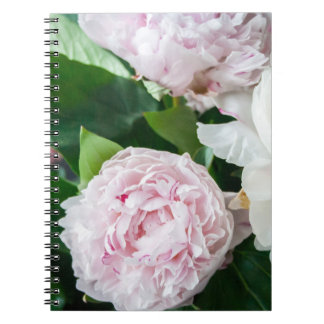 Pretty Peonies Pastel Bouquet Notebooks