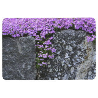 Pretty Phlox On Rocks Floor Mat