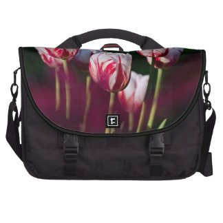 pretty pink and white tulips laptop bag