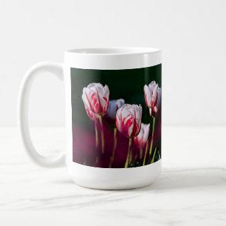 pretty pink and white tulips mug