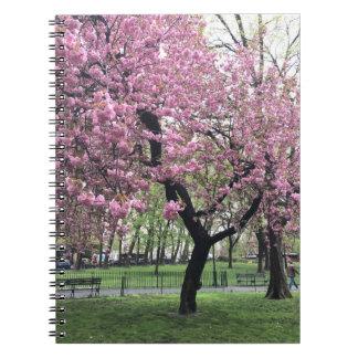 Pretty Pink Cherry Blossom Tree NYC New York City Notebook