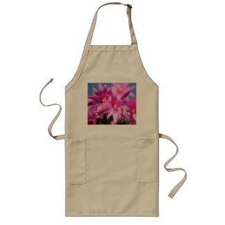 Pretty Pink Christmas Cactus Flowers Blooming Aprons