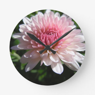 Pretty Pink Chrysanthemum Wallclock