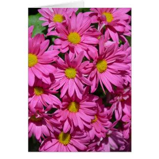 Pretty pink chrysanthemum flowers print greeting card