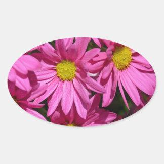 Pretty pink chrysanthemum flowers print oval sticker