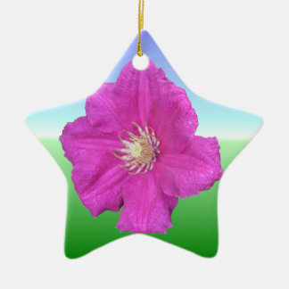 Pretty Pink Clematis Flower Double-Sided Star Ceramic Christmas Ornament