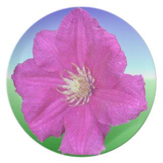 Pretty Pink Clematis Flower Decorative Dinner Plates