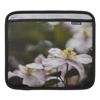 Pretty Pink Clematis flower Sleeves For iPads