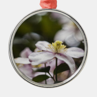 Pretty Pink Clematis flower Silver-Colored Round Decoration