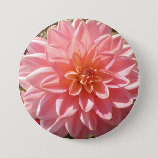 Pretty Pink Dahlia Flower 7.5 Cm Round Badge