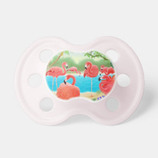 Pretty Pink Flamingo Birds Baby Pacifier