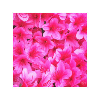 Pretty Pink Floral Art Canvas