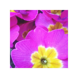 Pretty Pink Flowers Canvas Print