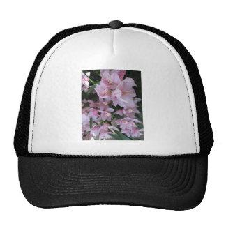 Pretty Pink Flowers - Longwood Gardens, PA Cap