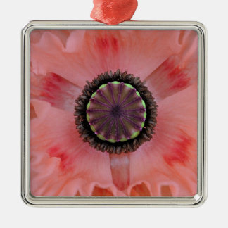 Pretty pink frilled poppy Silver-Colored square decoration