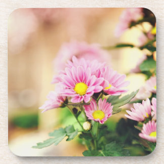 Pretty pink garden flowers coasters