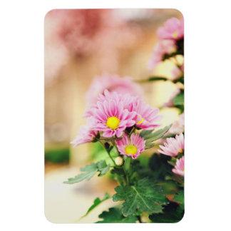 Pretty pink garden flowers rectangular magnet