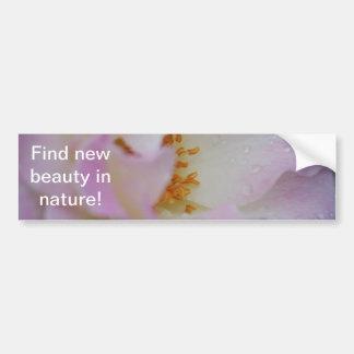 Pretty pink macro rose bumper sticker