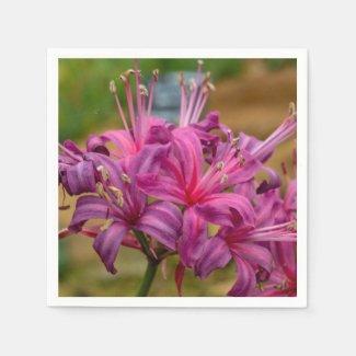 Pretty Pink Nerine Flowers Paper Napkins